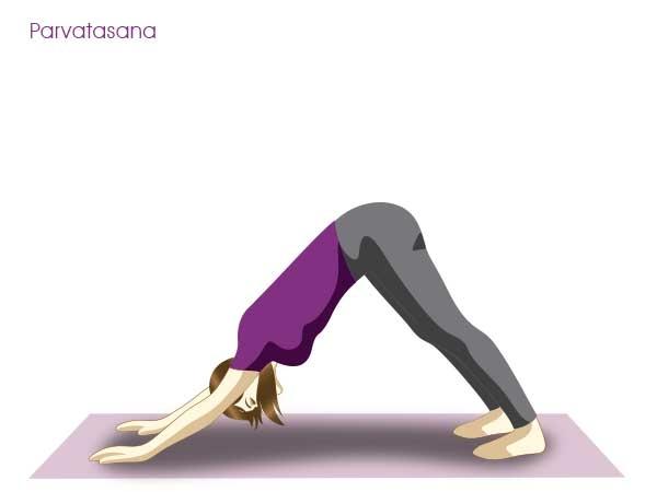Back Pain: 20 Yoga Poses for Backache : Ardh mukha savanasana (downward facing dog)