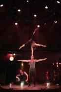 Fascinating Limbo Circus