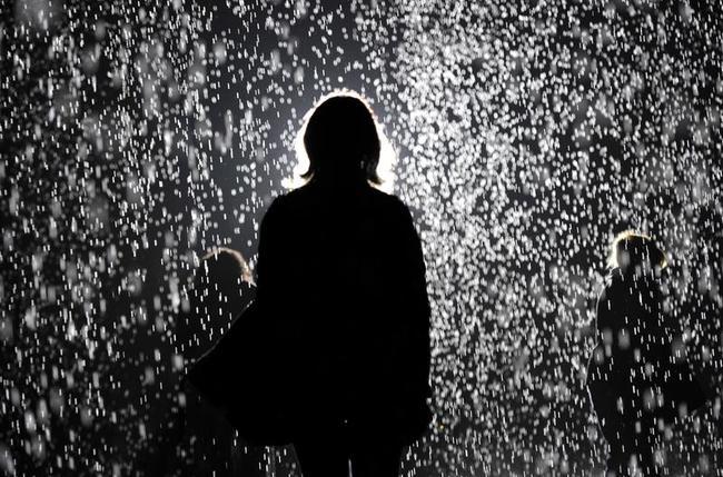 Rain Room Exhibition