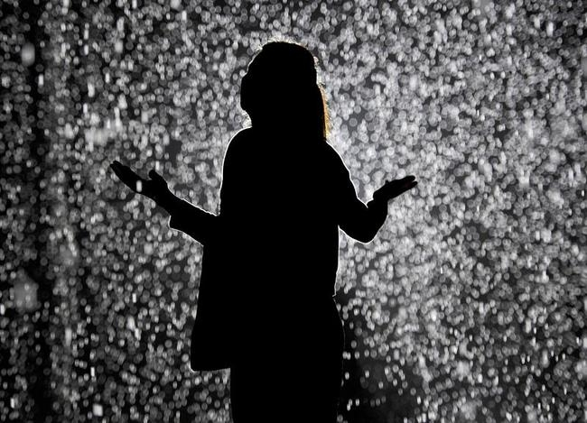 Rain Room Exhibition