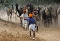 A camel trader signals to other traders at the Pushkar Fair in Rajasthan