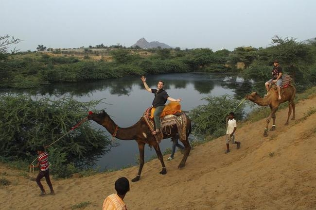 Annual Cattle Fair in Pushkar