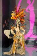 Miss Universe 2013: Bizarre National Costumes