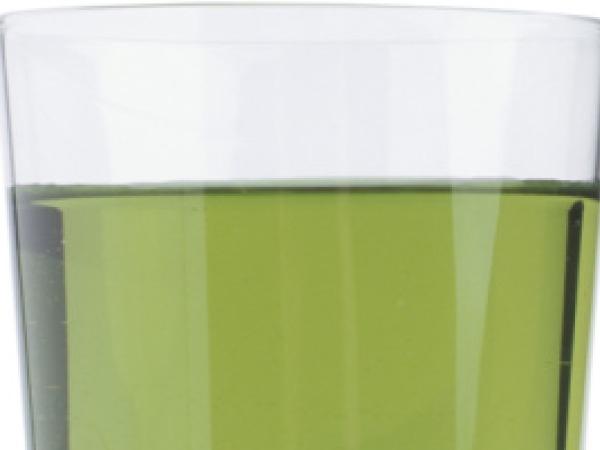 Juice Recipes: Top 15 Juice Recipes for Good Health Green Detox Juice
