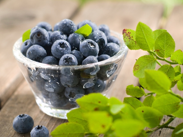 Food Cures for Disease Prevention # 5: Blueberries for memory loss