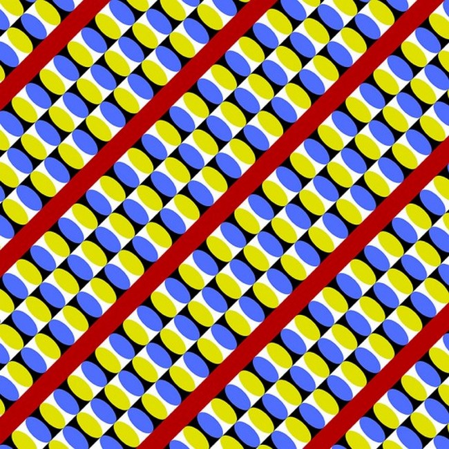 Snake conveyors Optical Illusions That Make You Dizzy