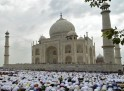 Eid al-Fitr Celebrations Around the World: PICS
