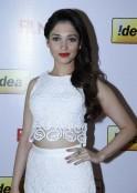 Tamannaah at the 61st Idea Filmfare South Awards 2013