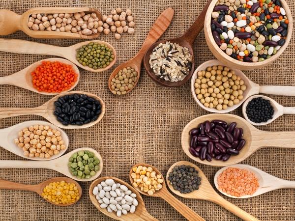 7 Essential Nutrients for Your Child's Development   Diet ...