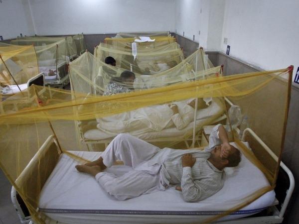 Odisha Dengue Cases Climb To 1,412
