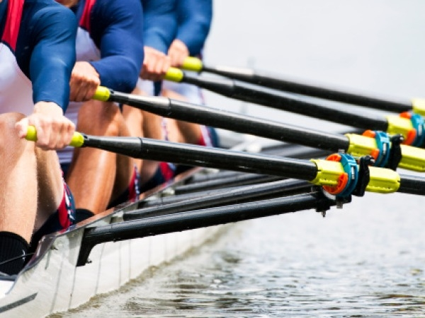 Skiers, Rowers May Not Have More Back Pain: Study