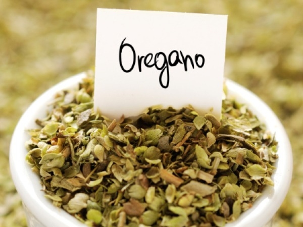 Food Basics: Health Benefits Of Oregano