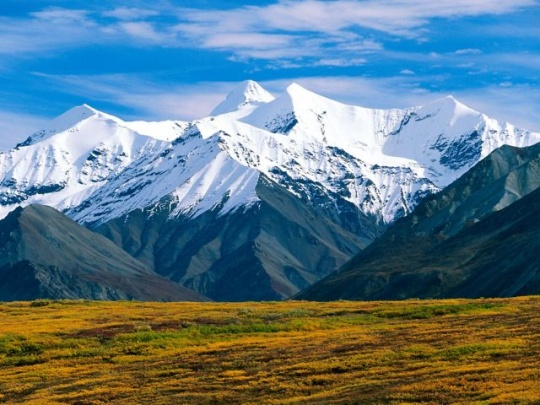Denali National Park - Alaska, United States Alaska is known as America's last frontier, and Denali is at the center of this incredible oasis. Visitors can stay at one of seven campgrounds throughout the park and bear witness to a pristine landscape with glacial mountain ranges, alpine forests and clear rivers and lakes. The wildlife in Denali is rampant with black bears, grizzlies, moose, sheep, marmots,