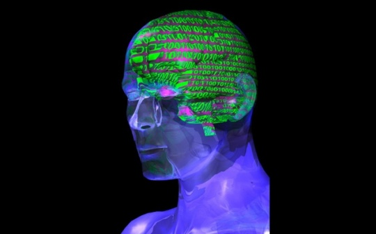 Human Brain Perceives Numbers by Mapping