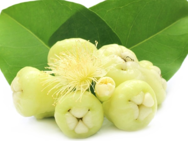 Health Benefits of White Jamun | Healthy Living ...