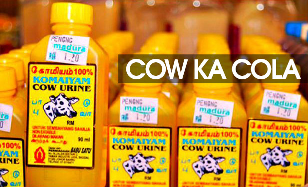 India 39 s ultimate obsession with 39 cow urine 39 for Cocktail urine