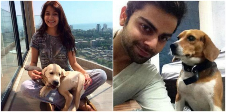 Image result for latest images of anushka sharma with her pet