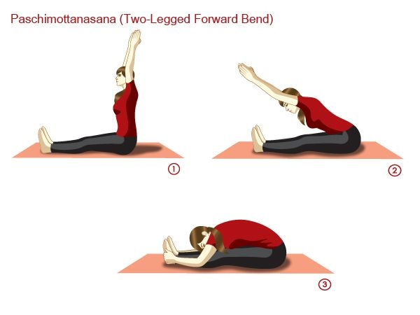 Paschimottanasana Two Legged Forward Bend