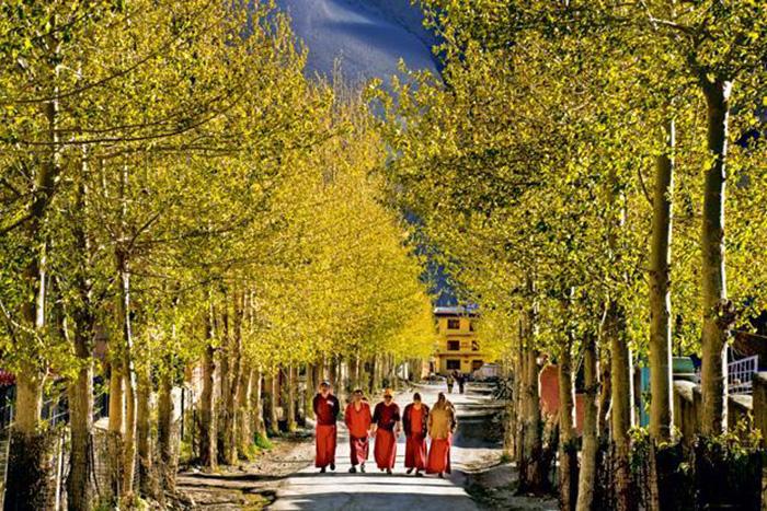 drift buddhist personals Download liebe leserin, lieber leser  liebe leserin, lieber leser, alle kennen die volkshochschule sie bietet ein breites spektrum an weiterbildung, das nahezu für jeden menschen ein.