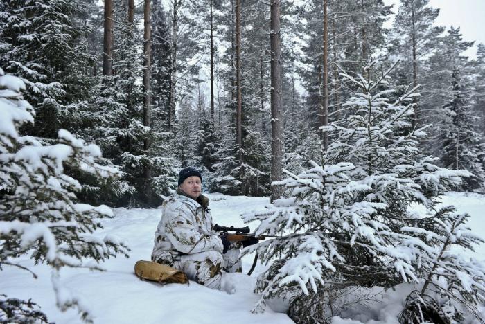 Sweden guns