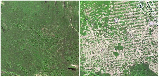 On World Environment Day NASA Reminds Us Of The Damage Weve Done - Us map day nasa