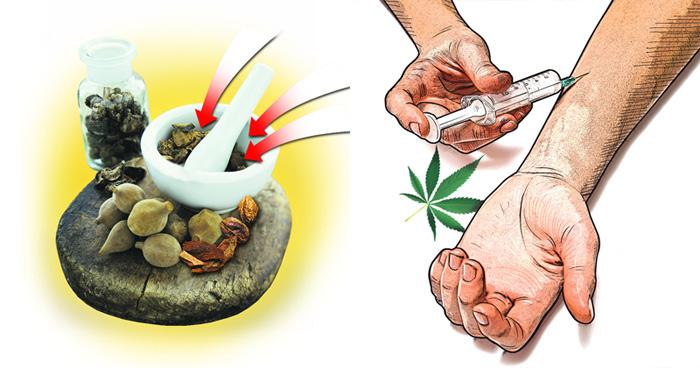 drug addiction kerala