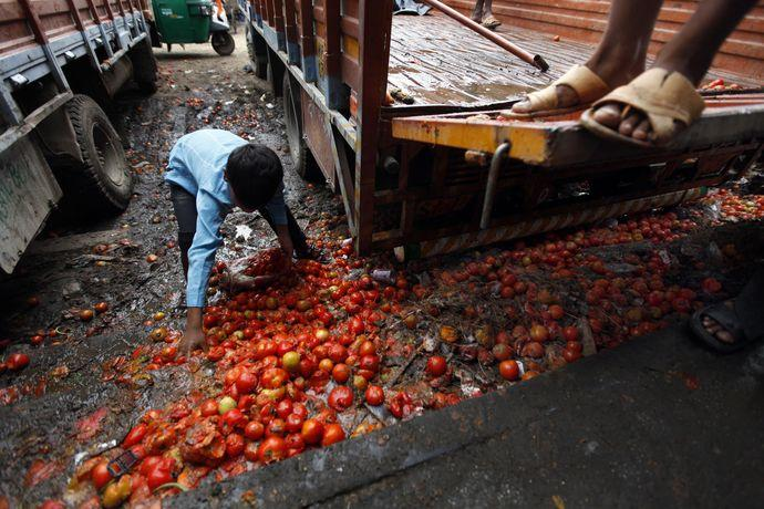 pan 2015 rotten tomatoes