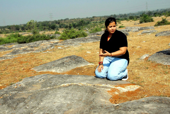 the discovery of the fossilized dinosaur eggs at the balasinor site in india