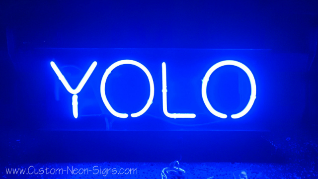 is yolo in the oxford dictionary