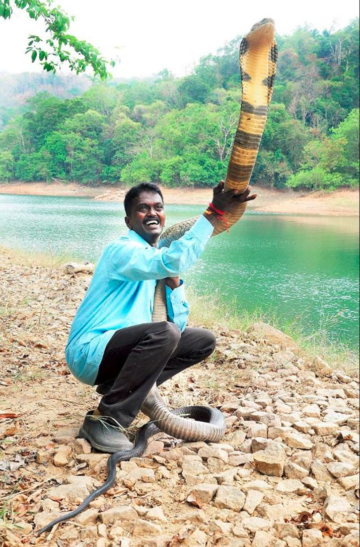 Meet Vava Suresh A Wildlife Conservationist Who Has Saved More
