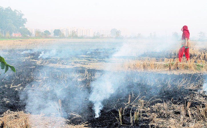 Image result for Air pollution rises in Delhi-NCR as stubble burning goes on
