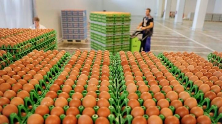 Developed countries take measures to sterilise the egg surface from contamination especially from Salmonella enteritidis. In India no such measures are taken and risk of egg increases.