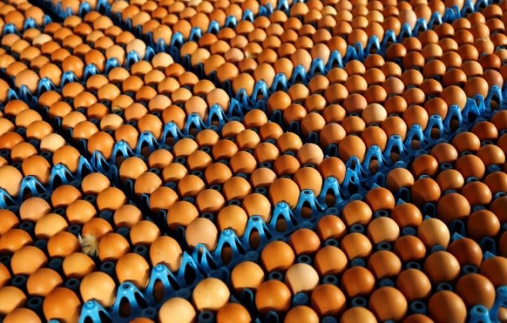 Although the FSSAI has proposed standards for fresh eggs in the Food Safety and Standards (Food Products Standards and Food Additives) Amendment Regulations, 2017, these standards will come into force once they are approved. The parameters laid down by them include: -Eggshells must be free of blood rings -Eggs must not be soiled or have faecal matter and they must not be cracked or leaking -They've laid down the amount of water, protein, fats and carbohydrates that eggs must contain -Eggs must adhere to hygienic parameters and hygienic controls, like time and temperature, that must be observed during production, processing and handling which includes sorting, grading, washing, drying, treatment, packing, storage and distribution to point of consumption. -They've laid emphasis on the storage conditions like moisture and temperature so as to reduce microbial contamination, as microbial pathogens are a risk to human health.