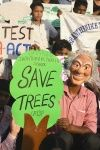 Karnataka Tree Preservation Act