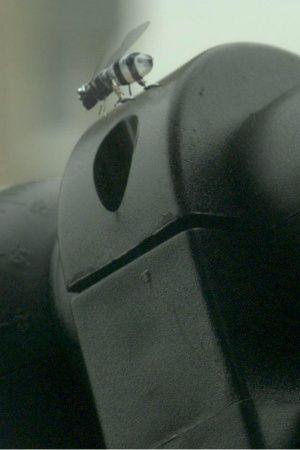 killer drone bees black mirror