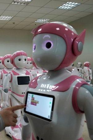 Ipal Social Robots