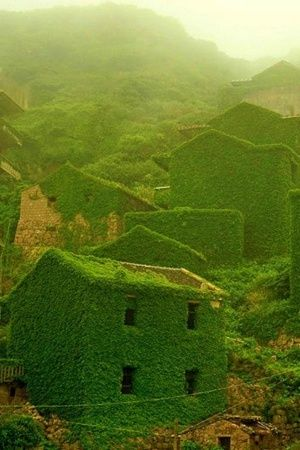 Humans Left This Chinese Village Decade And Nature Took Over This Is How It Looks Now