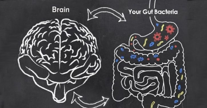 Our Body Has A 'Second Brain' And It's Smarter Than What We Think