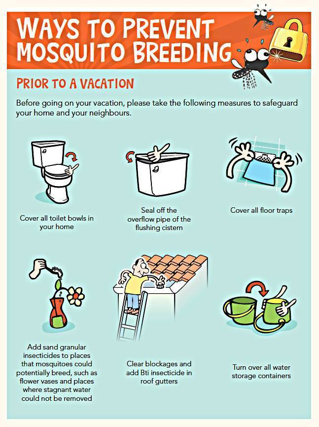 how to prevent dengue Anyone travelling to countries with known dengue activity is at risk of being bitten  by dengue infected mosquitoes the only way to prevent.