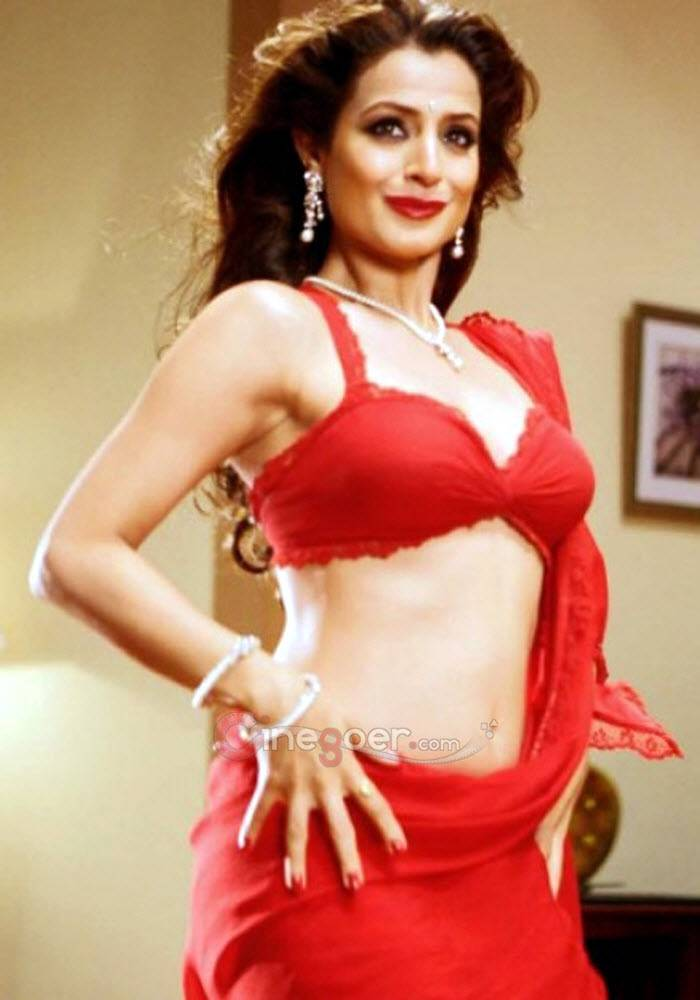 Amisha patel hot and sexy images-1152