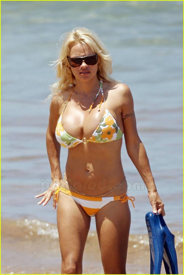 Thank you pam anderson pictures bikini