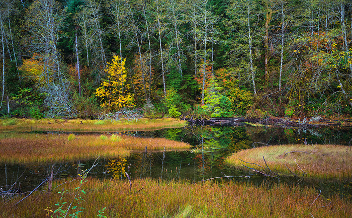 10 Most Beautiful Places In The World To Visit For Fall Colours