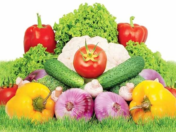 Summer Vegetables  Top 8 Indian Vegetables For Summer