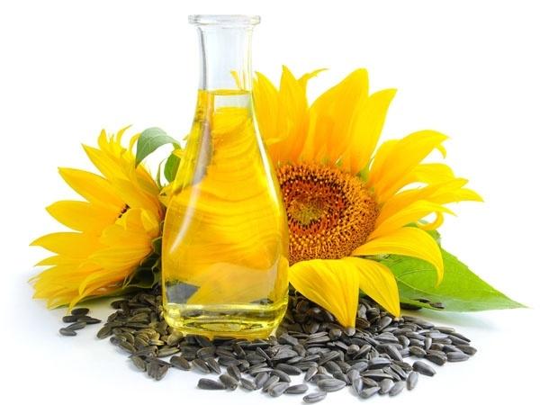 Health Food Sunflower Seeds