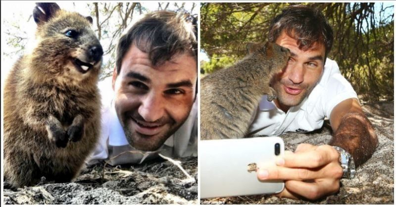 Roger Federer's Selfie With The World's Happiest Animal Is ...