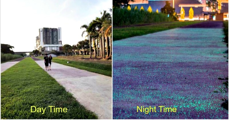 Street Lights Singapore Is Doing One Better Its Currently - Singapore is testing out glow in the dark pathways and they look amazing