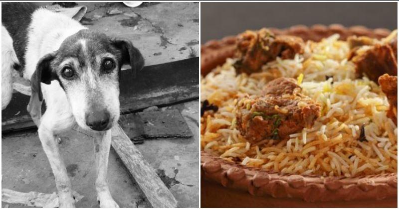 Aurangabad Restaurants May Be Selling Dog Meat 'Biryani,' Remains