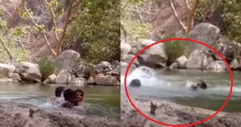 Not Knowing Swimming 3 Men Jump In A Pond In Rajasthan, Accidentally Film Themselves Drowning