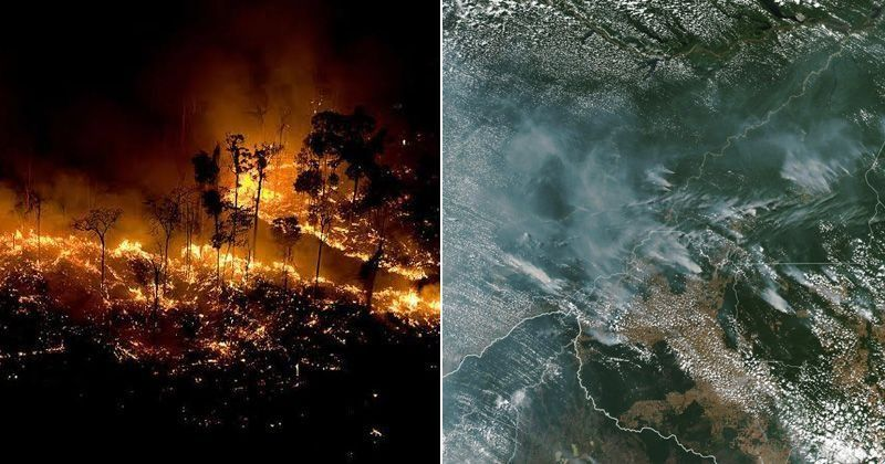 Amazon - The Fire In World's Largest Rainforest Is So Huge That It's Visible From Space - India Times thumbnail