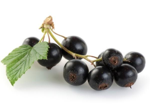 Foods for diabetics # 2: Black jamun